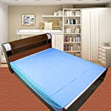 Dolphers Waterproof Plastic Mattress Protection Sheet for Baby and Adult - Double Bed/King Size - 7.5 x 6.5 feet - Blue