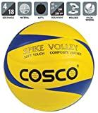 Rita Cosco Spike Volley Ball, Size 4