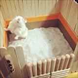 Sage Square Bath Sand for Hamster/Dwarf/Gerbil/Chinchilla/Mice (500 Grms) (Lemon Fragrance)