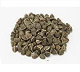 SK ORGANIC Wingless Moringa Drumstick Seeds (More than 4000 seeds) -1 Kg
