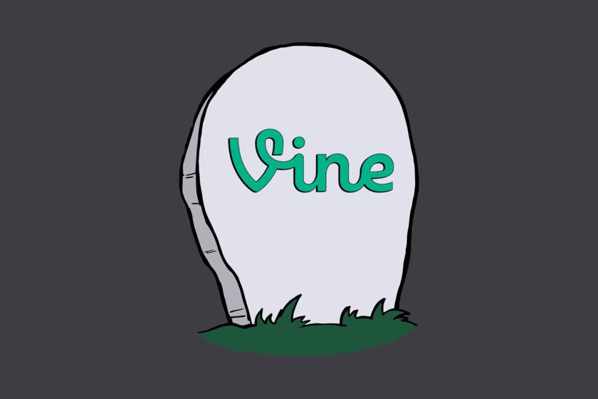 RIPVine